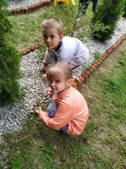 Prace w ogródku